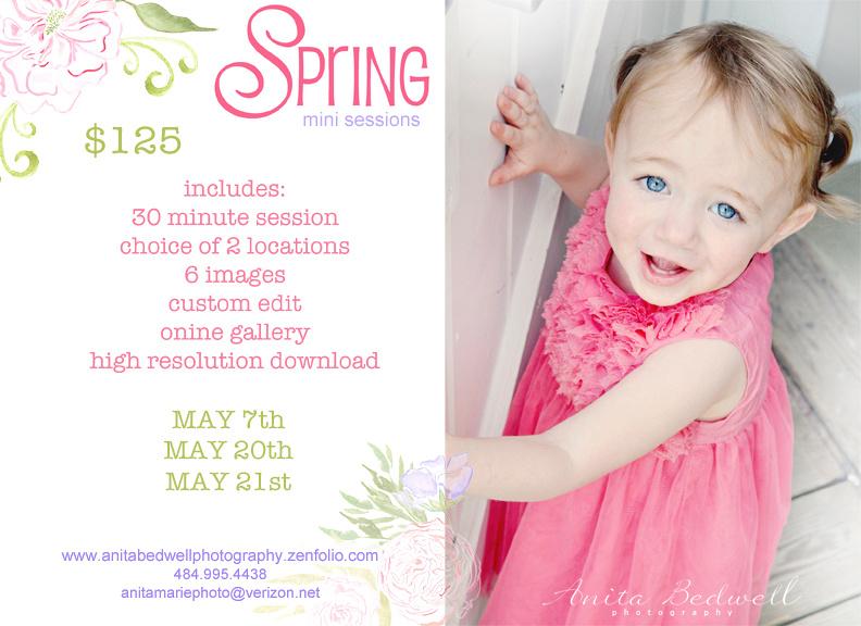 spring mini2017_edited-1